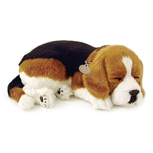 Perfect Petzzz Hundebaby Welpen Katzen Babies atmender Hund Haustier Verschiedene Hunde Rassen (Beagle)