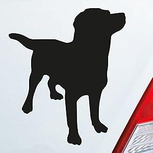 Aufkleber Auto Hund Labrador Deine Auto Teile De