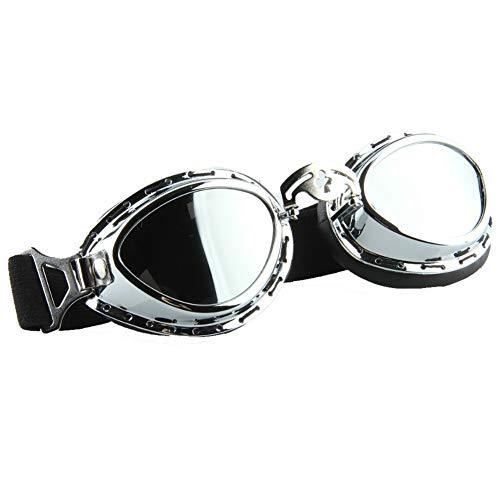 Winddichte Oculos Motocross Brille Motorrad Brille Ski Googles Anti-UV Retro Vintage Erwachsene Eyewear Glasse Gafas Moto (Google Gafas)
