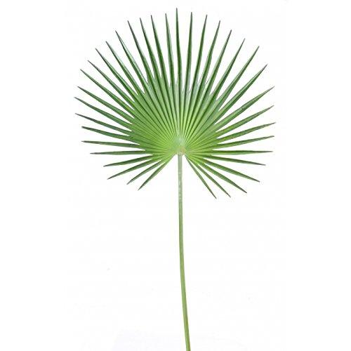 feuillage synthetique palme palmier camerus - h : 120