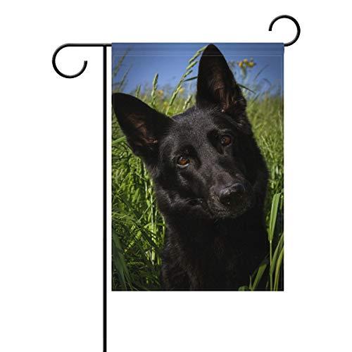 Hokkien Cool Doberman Pinscher Hund Garten Fahne Banner 30,5 x 45,7 cm Deko Garten Fahne für Outdoor Rasen und Garten Haus Dekor doppelseitig 12x18(in) Multi15 (Hund Rasen Plus)