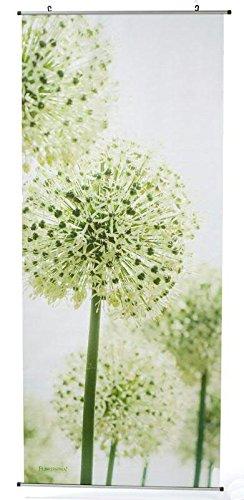 Textilbanner für Schaufenster - Thema: Frühling / Sommer - Blühende Allium / Pflanze - 180cmx75cm - Inklusive Bannerstäbe & Aufhänger - Banner zum Hängen & Dekorieren