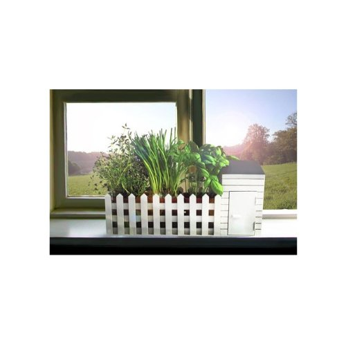 jardin-aromatique-dinterieur-cadeau-insolite
