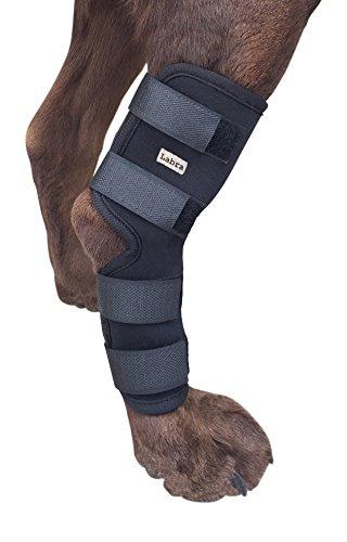 Labra Extra apoyo perro canino posterior pierna Hock conjunto Envuelva protege heridas...
