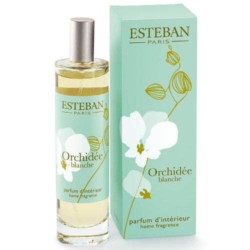 ESTEBAN Orchidee Blanche SPRAY ambienti profumo casa Orchidea Bianca 100ml