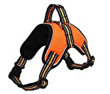 YAJAN-Dog Harness Hundegeschirr,No-Pull Hundegeschirr,Reflektierender Hundegürtel aus Leinen, Frontclip-Haustierwestengurt,Outdoor-Abenteuertraining, Gurtzeuggriff