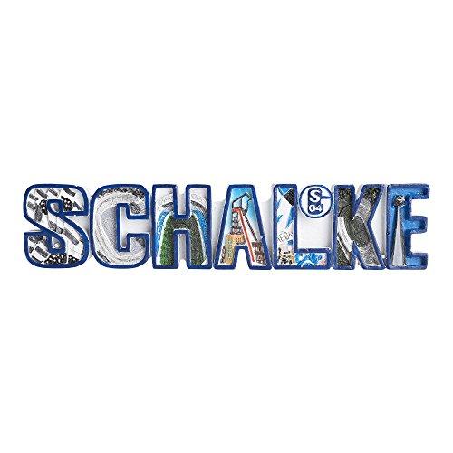FC Schalke 04 Magnet NEU