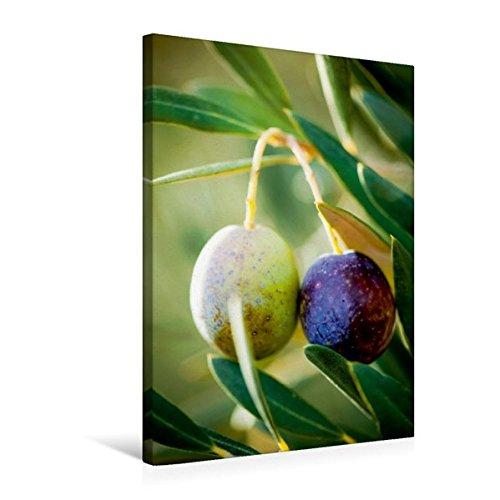 Premium Textil-Leinwand 50 cm x 75 cm hoch, Mediterrane Impressionen - grüne und schwarze Oliven im Sonnenlicht | Wandbild, Bild auf Keilrahmen. Baum - ein Sommertraum (CALVENDO Lifestyle) (Mediterrane Wildblumen)