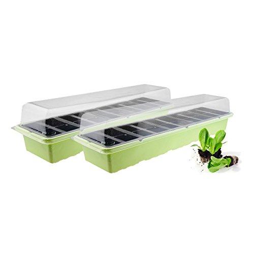 Quantio 2X Mini Gewächshaus - für bis zu 40 Pflanzen, ca. 54 x 16 x 12 cm (LxBxH) je Zimmergewächshaus, Kunststoff, Grün/Schwarz/Transparent