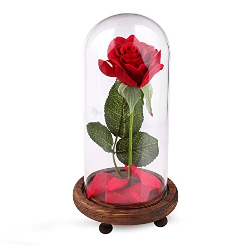 beauty-and-the-beast-full-kit-red-silk-rose-and-led-light-with-fallen-petals-in-a-glass-dome-on-a-wo