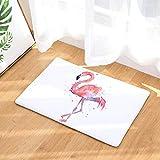 Nunbee Fußmatte Druck Designe Anti Rutsch Unterlage Wasseraufnahme Praktische Teppich Schmutzfangmatte Haustür Flur Innenbereich Aussen Lustig, Flamingo 2 50 * 80cm