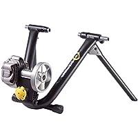 CycleOps Fluid 2 - Rodillo de entrenamiento con resistencia, color negro