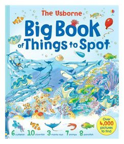 The Usborne Big Book of Things to Spot (1001 Things to Spot)