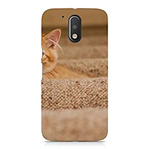 Hamee Designer Printed Hard Back Case Cover for Nokia 6 Design 8709