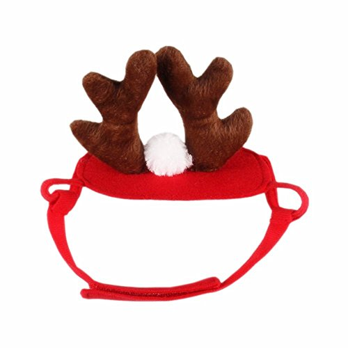 Bello Luna Pet Antlers Cosplay Kostüm Halloween Weihnachten Zubehör Stirnband für Hund und - Luna Bella Halloween
