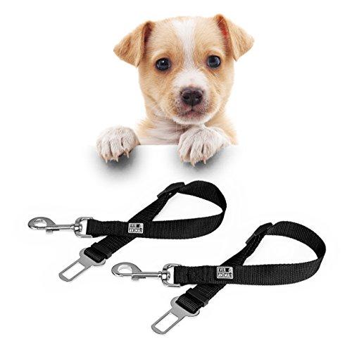 2 Sicherheitsleinen Für Hunde Im Auto 40-60cm | Sicherheitsgeschirr | Hundegurt | Anschnallgurte Um Hunde im Auto Zu Sichern | Hundeleine Gurtschloss | Hundeschutz Sicherheitsgurt | Von Everanimals