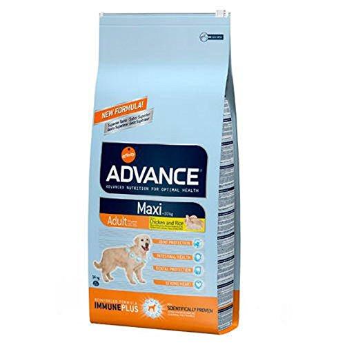 Advance Maxi Adult 14 kg
