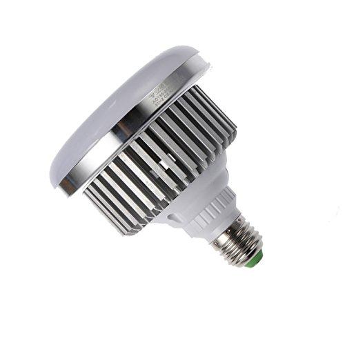 Professionelle Fotografie LED E27Leuchtmittel (65W, 5.500K), flimmerfrei, Softbox, für Foto Studio und Online Celebrity, für Portrait und Artikel zu Beleuchtung
