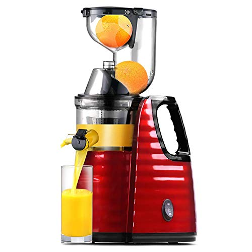Lndixy Langsame Juicer Masticating Juicer Machine, Juicers Whole Fruit and Vegetable with Dual-Stage Quiet Motor & Reverse Function