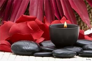 Tableau Zen Spa Galets et Fleur Rouge