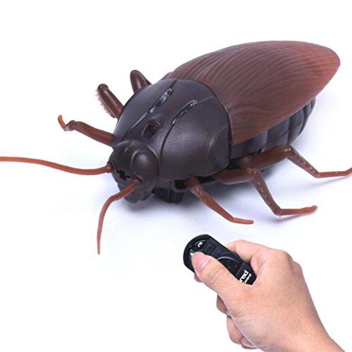 Routinfly Hohe Simulation Tier Schabe Fernbedienung Spielzeug Kinder -