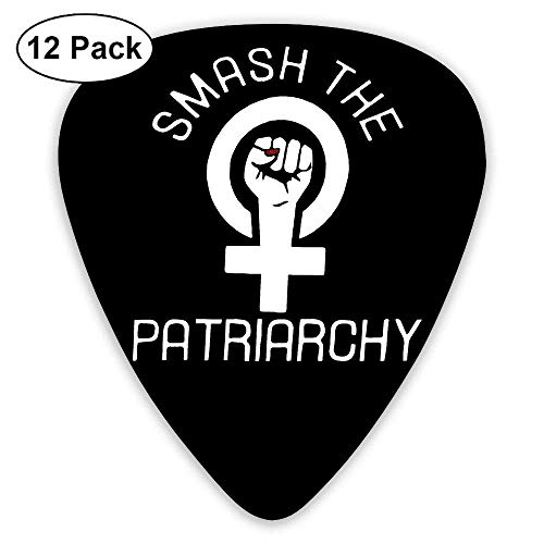 Smash The Patriarchy Feminist 351 Shape Classic Picks 12 Pack For Electric Guitar Acoustic Mandolin Bass (009 String, Guitar Electric)