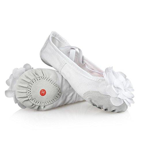 Wgwioo Little Kid Ballet Flower Scarpe Split Sole Soft Tela Canvas Ball Flat Ginnastica Dancing Pantofole Per Girls Donne Ladies Pack Di 4 2#