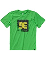 Dc Shoes Camiseta junior Blowout T.shirt m / m ropa snowboard EDBZT00026-GNS0