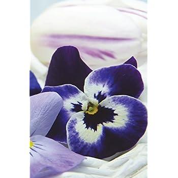 Carnet de Notes: Petit journal personnel de 121 pages blanches avec couverture « Fleurs - Pensées »
