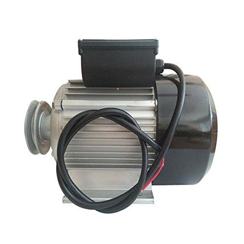 Moteur électrique 3cv/230V avec poulie