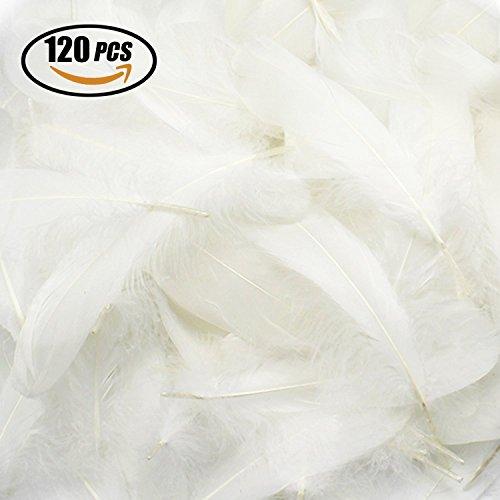 Reastar DIY Weiß Federn, 120 Stück Naturfedern, Ideal als Dekoration Zum Karnival für Halloween Fest Masken, Kostüme und Basteln für Kinder, Sicher und Ungiftig und Nicht verblassen