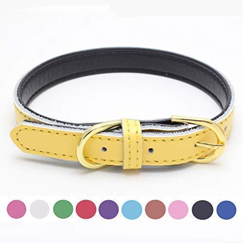 teemerryca Katzenhalsband mit Glöckchen, weiches Leder, für kleine und mittelgroße Hunde