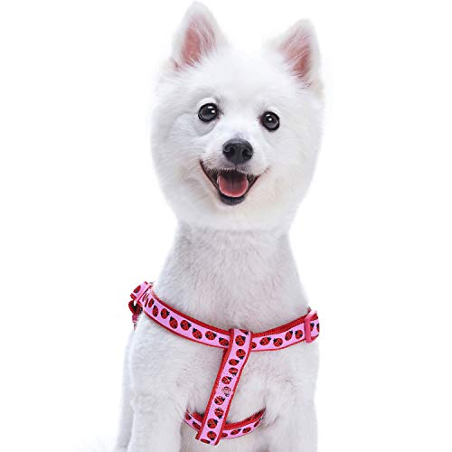 Blueberry Pet Step-In Geschirre für Hunde Marienkäfer Designer Hundegeschirr mit Zugentlastung, Verstellbar, Nylon 51-66cm Brust, Passender Hundehalsband & Hundeleinen erhältlich separate -
