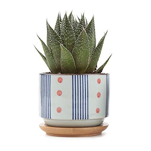 t4u-75cm-ceramic-japanese-style-serial-no5-sucuulent-plant-pot-cactus-plant-pot-flower-pot-container