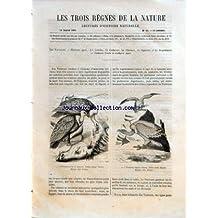 TROIS REGNES DE LA NATURE (LES) [No 55] du 14/01/1865 - LES VAUTOURS - LES CONDORS - LES CATHARIES - LES GYPAETES ET LES SERPENTAIRES - CATHARTE URUBU ET CATHARTE AURA