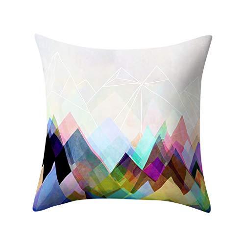 EERTX Spielraum! kissenhülle Kopfkissenbezug Home Dekoration Pillowcase Super weich Sofakissen für Wohnzimmer Sofa Bed