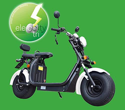 Scooter elettrico FAT WHEELS Modello TARGA - Citycoco (BIANCO)