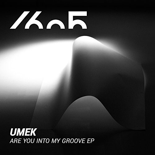 Are You Into My Groove (Original Mix)