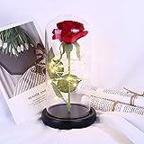 OSALADI Rosa roja Flor de luz LED Cadena de cristal Decoración de cúpula para boda Día de San Valentín Regalo de cumpleaños Regalo del dia de la madre(Sin batería incluida)