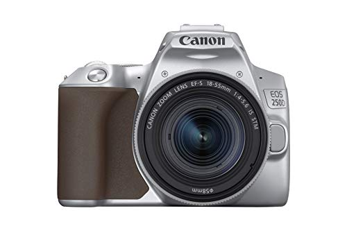 Canon EOS 250D Digitalkamera (24,1 Megapixel, 7,7 cm (3 Zoll) Vari-Angle Display, APS-C-Sensor, 4K, Full-HD, DIGIC 8, WLAN, Bluetooth) inkl. EF-S 18-55mm f/4-5,6 IS STM Objektiv silber (18-megapixel-kamera Canon)