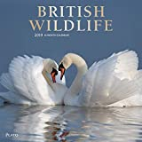 British Wildlife 2019 Calendar