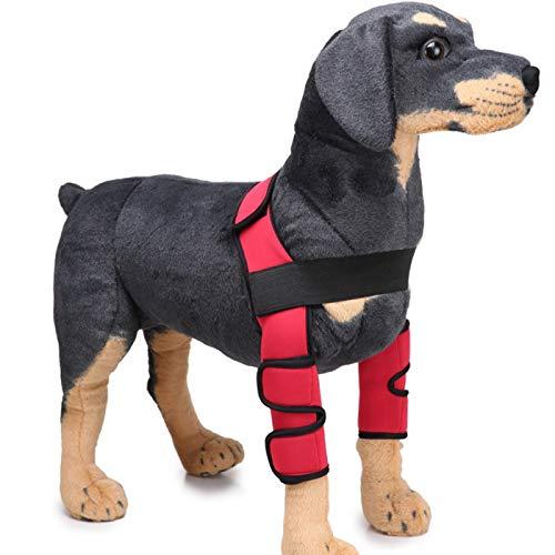 Alfie Pet by Petoga Couture Hosenträger für Hunde, Tegan, mit Stützmanschette, Größe S, (Rote Pudel Rock Kostüm)
