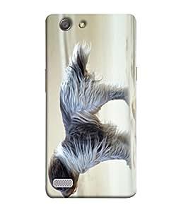 PrintVisa Designer Back Case Cover for Oppo Neo 7 :: Oppo A33 (Dog Puppy Pet Animal Long Hair Poster)