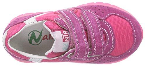 Naturino Naturino Isao Vl., Baskets Basses fille Rose - Pink (VELOUR/CORD./NAPPA FUXIA-BIANCO)