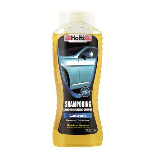 HOLTS shampoing lustrant 500ml