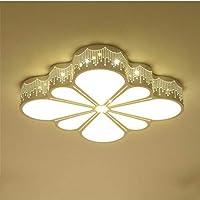 Lampadario A Led Da Pareteled Chambre Creative Chambre Balcon Allée Salle Éclairage 60 * 48 * 9 Cm
