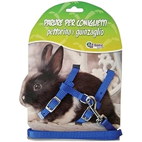 Parure per coniglio - Kit comprensivo di collare e guinzaglio