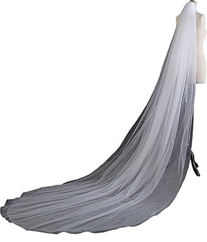 RuiyuhongE 2- Schicht 3M Brautschleier Zarte Tüll Hochzeit Schleier mit Kamm (Weiß)