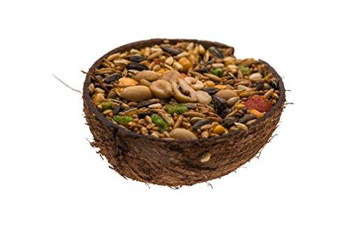 Lucas the Wombat for his Friends: Snacks in Kokosnusschale - Nuss 3 x 200 ml - Sparset. Leckereien für alle Nager und Kanninchen.