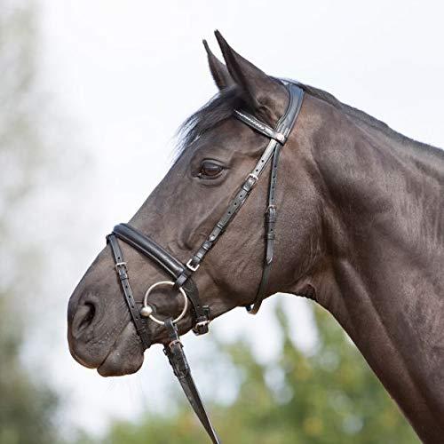 Kieffer Trensenzaum Ultrasoft schwarz englisches Reithalfter Stirnband mit Perlen gepolstertes Genickstück professional , Größe Pferd:Warmblut -